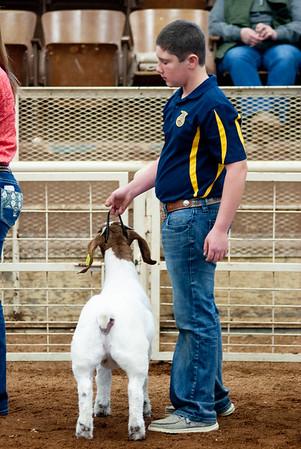 eosc_goats_20200104-13