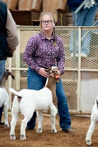 eosc_goats_20200104-9