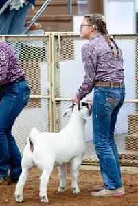eosc_goats_20200104-10