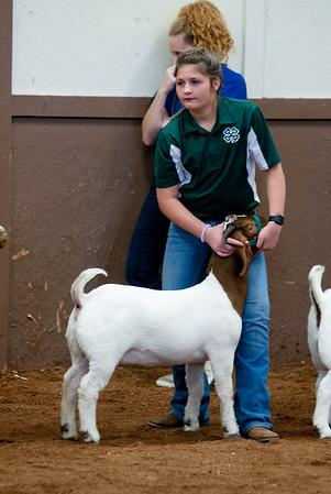 eosc_goats_20200104-40
