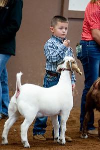 eosc_goats_20200104-15