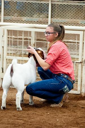 eosc_goats_20200104-4