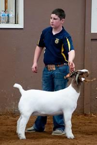 eosc_goats_20200104-41
