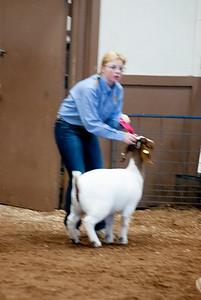 eosc_goats_20200104-22