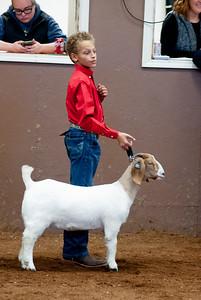 eosc_goats_20200104-26
