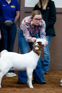 eosc_goats_20200104-20