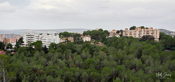Over View of Palma from Bellver Castle