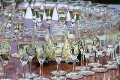 Champagne Glasses Surround Hydrangea Blossoms