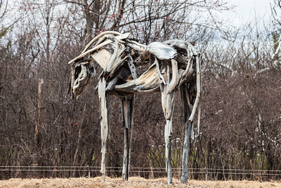 Wood sculpture of a horse in the Frederik Meijer Gardens and Sculpture Park, Grand Rapids, Michigan.
