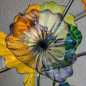 Chihuly Glass, Frederik Meijer Gardens & Sculpture Park, Grand Rapids, Michigan USA