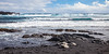 Sea Turtles at Rest by the Sea on Hawaii's Big Island