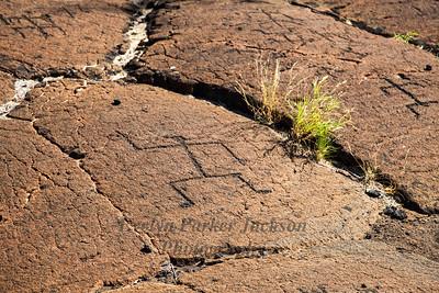 Petroglyph Landscape on Hawaii's Big Island