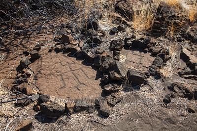 Petroglyphs on the Big Island of Hawaii