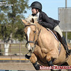 Equestrian : 6 galleries with 117 photos