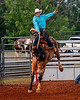 Danville-Pittsylvania County Fairgrounds Rodeo May 2019