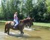 Les Abrons Riding 2014-1060932