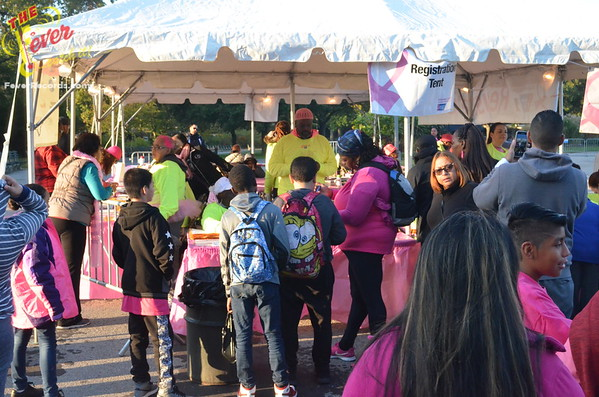 ERIKA ROMAN MEMORIAL FOUNDATION MAKING STRIDES FOR BREAST CANCER 2016