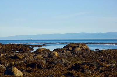 Low tide and ship in the Strait of Juan de Fuca.