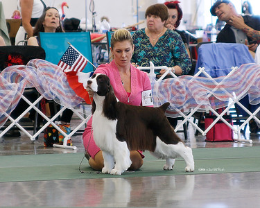 GCH WYNMOOR SWEETGRASS WHITE DIAMONDS
