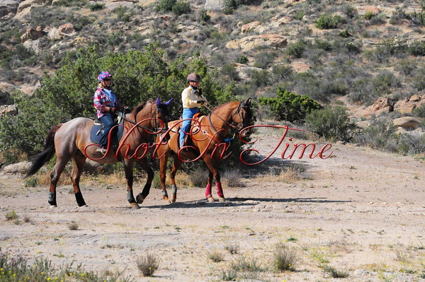 Vasquez Rocks Trail Trial 5/24/15