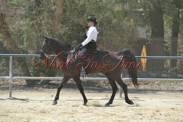 Afternoon Classes - Gaited and Jack Benny