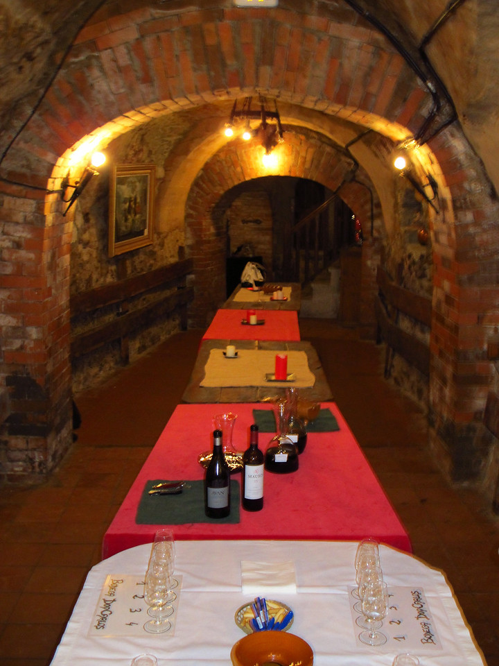 They offer guided visits where they explain everything about these type of cellars.. They also offer commented wine tasting. The cellar is used as a tasting room and it has a small museum