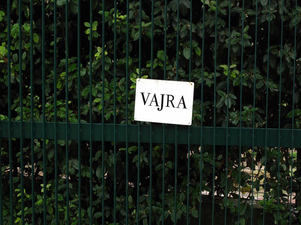 Next stop is the Vajra vineyard.