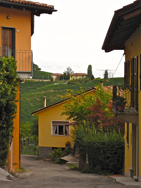 The vineyards around the town of Barbaresco are responsible for 45% of the region's Barbaresco production with many of the area's largest wineries located in town. Wines from this area tend to be relatively light in color and body but very well structured and aromatic.