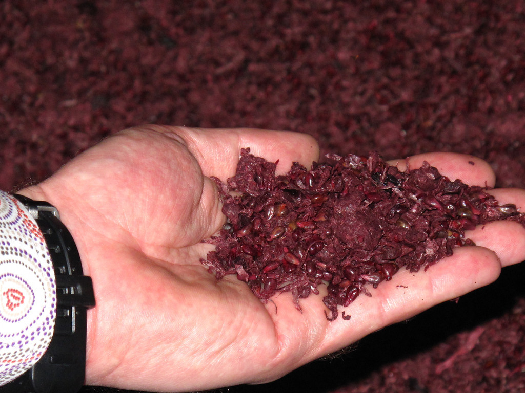 The grape skins are then sold to a distillery that makes Grappa, the dessert liquer.