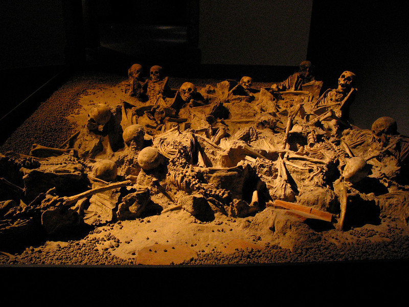 An excavation exhibition of remains unearthed at Pompeii