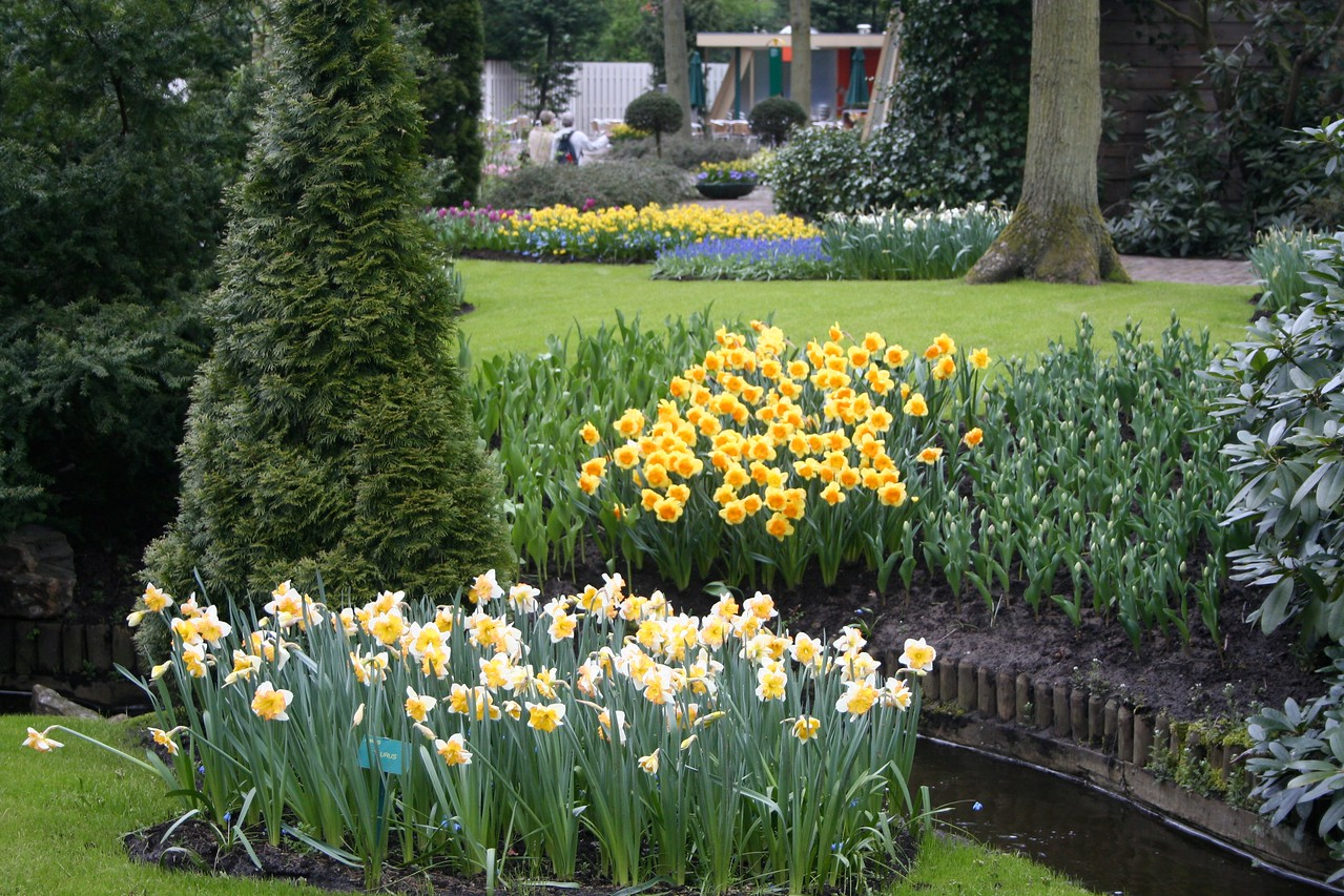 The garden was established in 1949 by the then-mayor of Lisse.