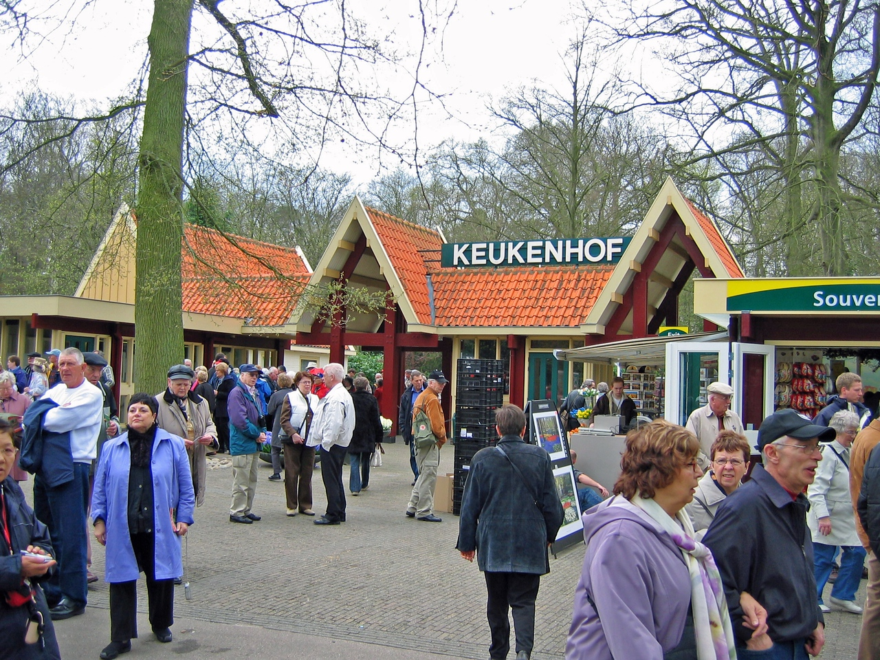 The Keukenhof is open only 7-8 weeks each year from late March to mid-May.