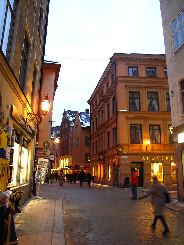 The Parliament Buildings and Royal Palace are in the original city of Stockholm called Gamla Stan.  It's where Stockholm began.