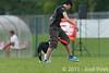 EUC2011, Maribor Slovenia.<br /> Frisbee Dog.<br /> PhotoID : 2011-08-06-0933