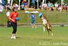 EUC2011, Maribor Slovenia.<br /> Frisbee Dog.<br /> PhotoID : 2011-08-06-0127
