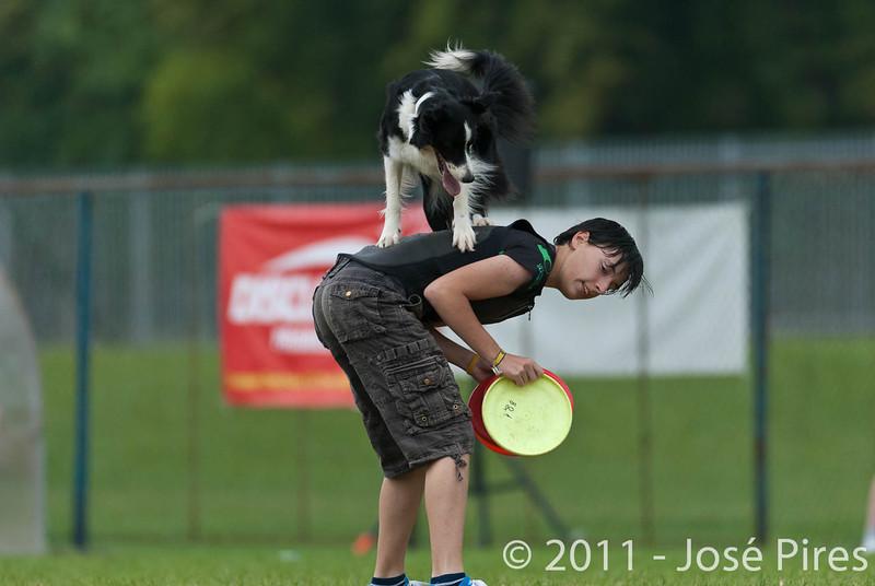 EUC2011, Maribor Slovenia.<br /> Frisbee Dog.<br /> PhotoID : 2011-08-06-0918