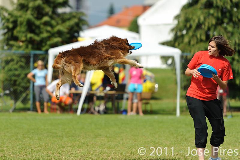 EUC2011, Maribor Slovenia.<br /> Frisbee Dog.<br /> PhotoID : 2011-08-06-0116