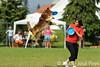EUC2011, Maribor Slovenia.<br /> Frisbee Dog.<br /> PhotoID : 2011-08-06-0114