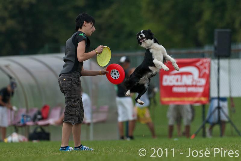 EUC2011, Maribor Slovenia.<br /> Frisbee Dog.<br /> PhotoID : 2011-08-06-0890