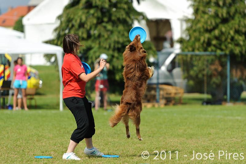 EUC2011, Maribor Slovenia.<br /> Frisbee Dog.<br /> PhotoID : 2011-08-06-0118