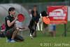 EUC2011, Maribor Slovenia.<br /> Frisbee Dog.<br /> PhotoID : 2011-08-06-0889