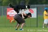 EUC2011, Maribor Slovenia.<br /> Frisbee Dog.<br /> PhotoID : 2011-08-06-0936