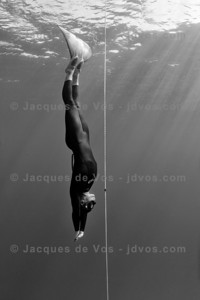 Razors Edge...  New Zealand Freediver Chris Marshall during a dive in Dahab, Egypt.  Ikelite 7D Housing (8'' Dome Port) Ikelite DS-161 Strobes