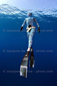 Blending In...  Record Italian Freediver Linda Paganelli  Ikelite 7D Housing (8'' Dome Port) Ikelite DS-161 Strobes
