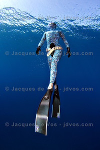 Blending In...  Record Italian Freediver Linda Paganelli  Ikelite 7D Housing (8'' Dome Port) Ikelite DS-161 Strobes