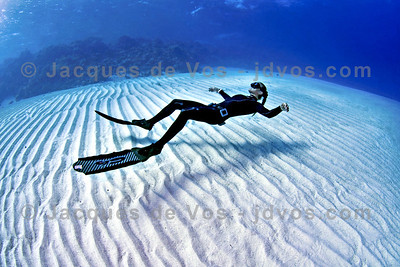 Hover...  Linda Paganelli over Eel Garden in Egypt  Ikelite 50D Housing (8'' Dome Port) Ikelite DS-160 Strobes