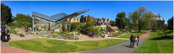 ROYAL BOTANIC GARDEN, EDINBURGH - THE ALPINE GARDEN