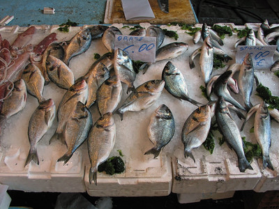 NAPLES FISH MARKET