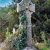 A Celtic Cross at St Michael's Church, Porthilly, Rock, Cornwall