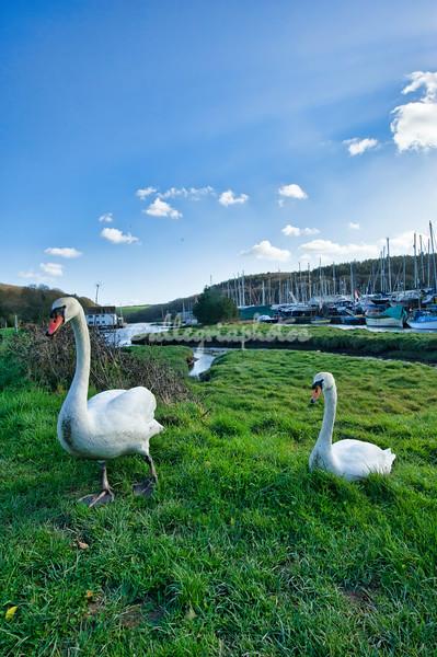 Gweek, Cornwall